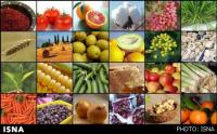 رئیس کمیسیون کشاورزی اتاق ایران؛خرید تضمینی باعث افزایش قیمت مواد غذایی میشود