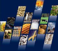 پیشبینی فائو از وضعیت غذا در سال ۲۰۱۸