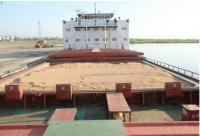 افزایش بهای گندم در بازار جهانی به علت آلوده بودن گندم روسیه به مواد رادیو اکتیو
