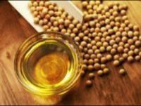 چشم انداز تداوم افزایش بهای سویا در بازار جهانی