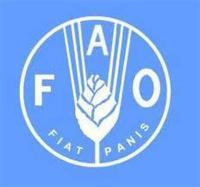 بر اساس تازه ترین گزارش فائو: بهای مواد غذایی بالا رفت