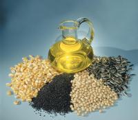 نرخ علیالحساب خرید تضمینی دانههای روغنی